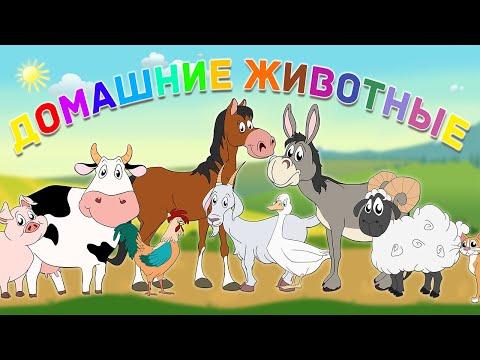 Как говорят домашние животные? Учим домашних животных. Видео для детей с 0 до 7 лет! Ферма.