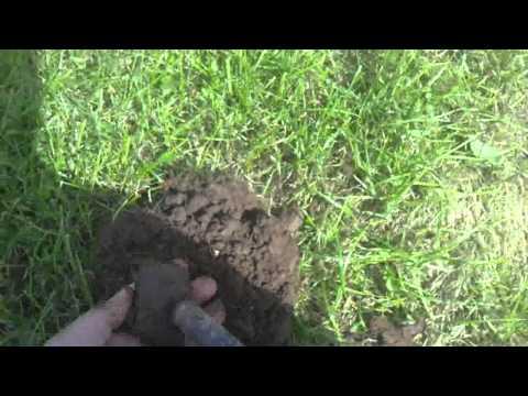 Metal Detecting for 2 hours Garrett Euro Ace 350 Devon UK