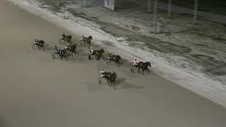 Vidéo de la course PMU PRIX KURT ANDERSSONS MINNESLOPP - QHURTH.COM