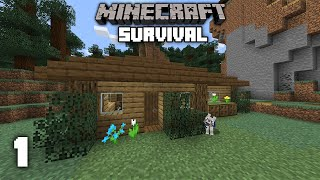 Minecraft: A New Journey - 1.15 Survival Let's play | Ep 1