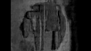 Baltic Sea Anomaly.   The blueview images.