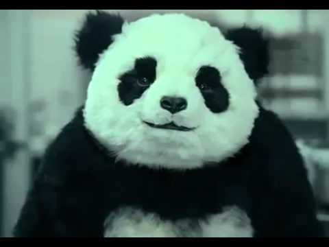 Panda Cheese Commercials (All 5)