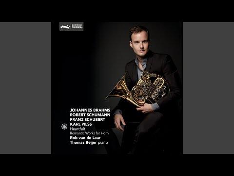 Horn Trio, Op. 40: Adagio Mesto