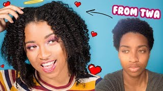 get-out-of-the-twa-phase--lets-chat-about-these-natural-hair-growth-tips-