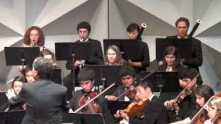 PACO Sinfonia: Beethoven Symphony No.1 (part 1 of 4)