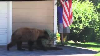 Испуги людей. Мужик испугался Медведя а Медведь его! прикол 2015