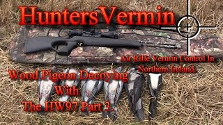 air rifle hunting wood pigeon decoying with the hw97 part 3