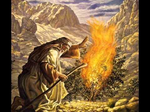 Павел Шавловский - Пророк