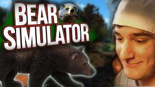 BEAR SIMULATOR -