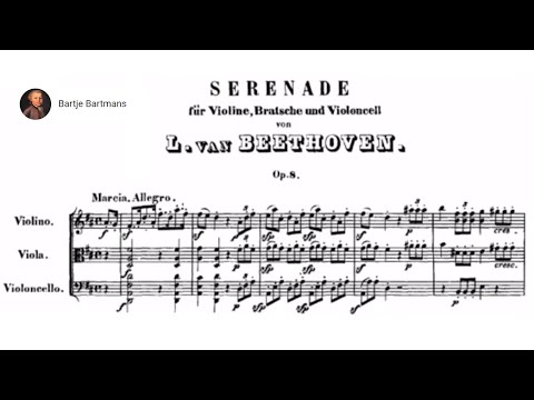 Beethoven - Serenade in D major, Op. 8