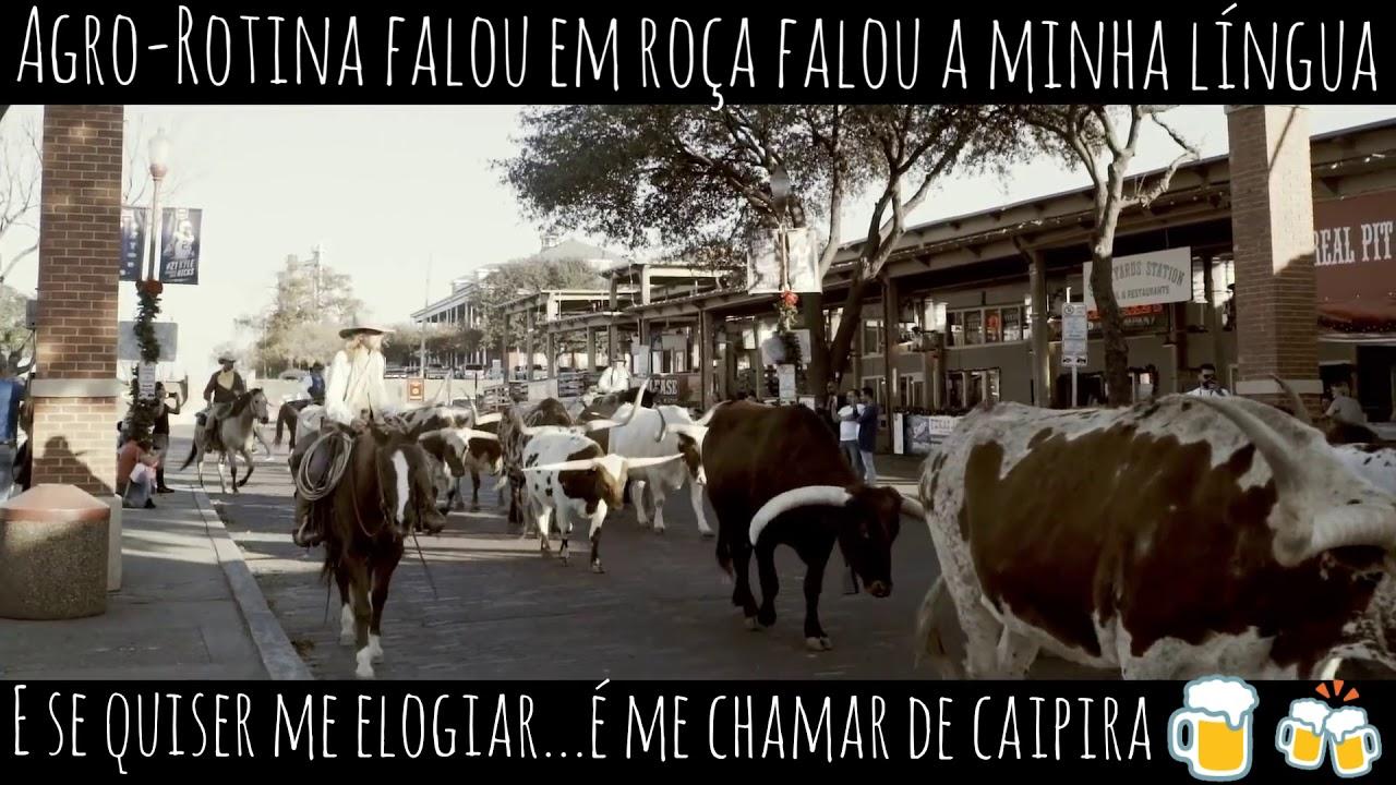 Bruno E Barretto Agro Rotina Status De Whatsapp