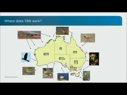 J Thomas: The Threatened Bird Network (Excerpt)
