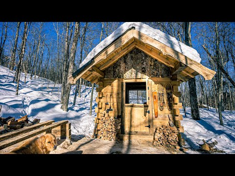 How and Why I Built a Stable Door for my Log Cabin Workshop From a Spruce Tree