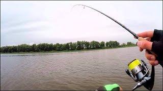 Рыбалка в октябре. На спиннинг. Поймал рыбу с первого заброса и ПОПЁРЛО!!!