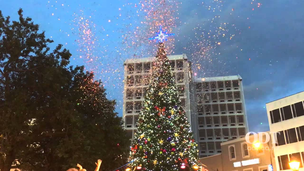 Lighting of the Dunedin Christmas Tree - YouTube