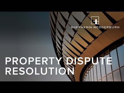 Property Dispute Resolution - Case Law Update