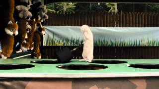 4 комедии про животных