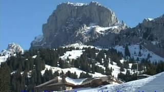 Bergwald vom Jauntal