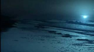 The Sisters of Mercy - Flood II (2008)