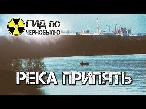 Рыба реки Припять