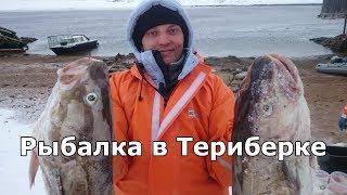видео рыбалка в Териберке