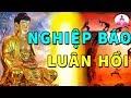 Luật Nhân Quả Báo Ứng  NGHIỆP BÁO Trộm Cắp Tham Lam - Lời Phật Dạy Về Luật Nhân Quả