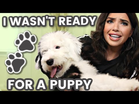 I WASN'T READY FOR A PUPPY | New Puppy Tips | What I Wish I Knew Before Getting a Puppy