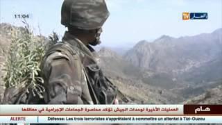 وحدات الجيش الوطني الشعبي تقضي على 3 إرهبيين بتيزي وزو