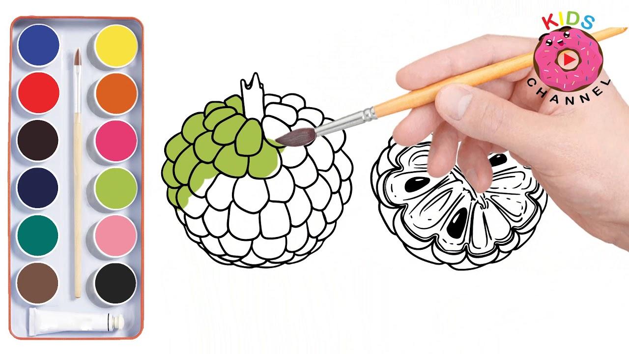 How To Draw Sugar Apple And Sapodilla