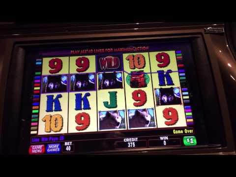 Video Slot jackpot winners 2016