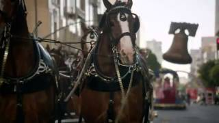 Budweiser Super Bowl 2013 Commercial: If You Like Things that are Cute as Hell...