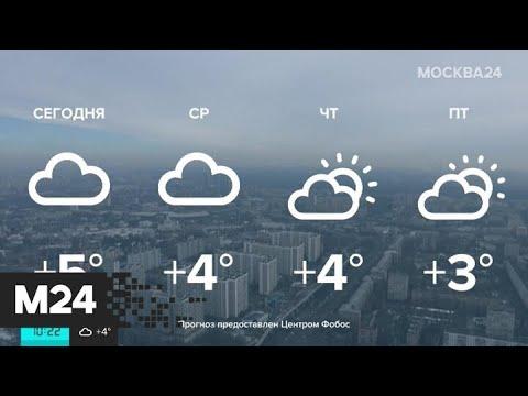 """""""Утро"""": аномально теплая погода ожидается в столичном регионе 18 февраля - Москва 24"""