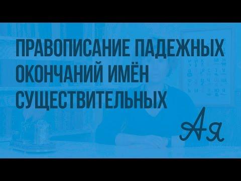 Правописание падежных окончаний имён существительных. Видеоурок  по русскому языку  4  класс