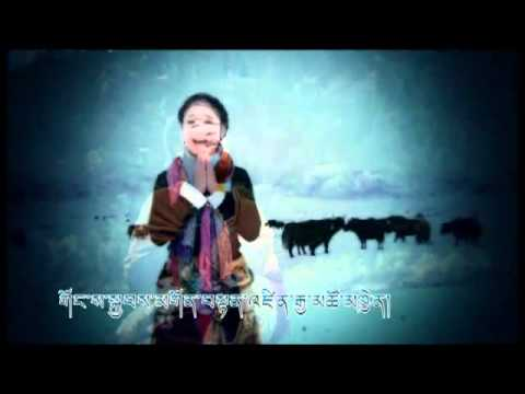 New Tibetan Song Long life H.H Lama