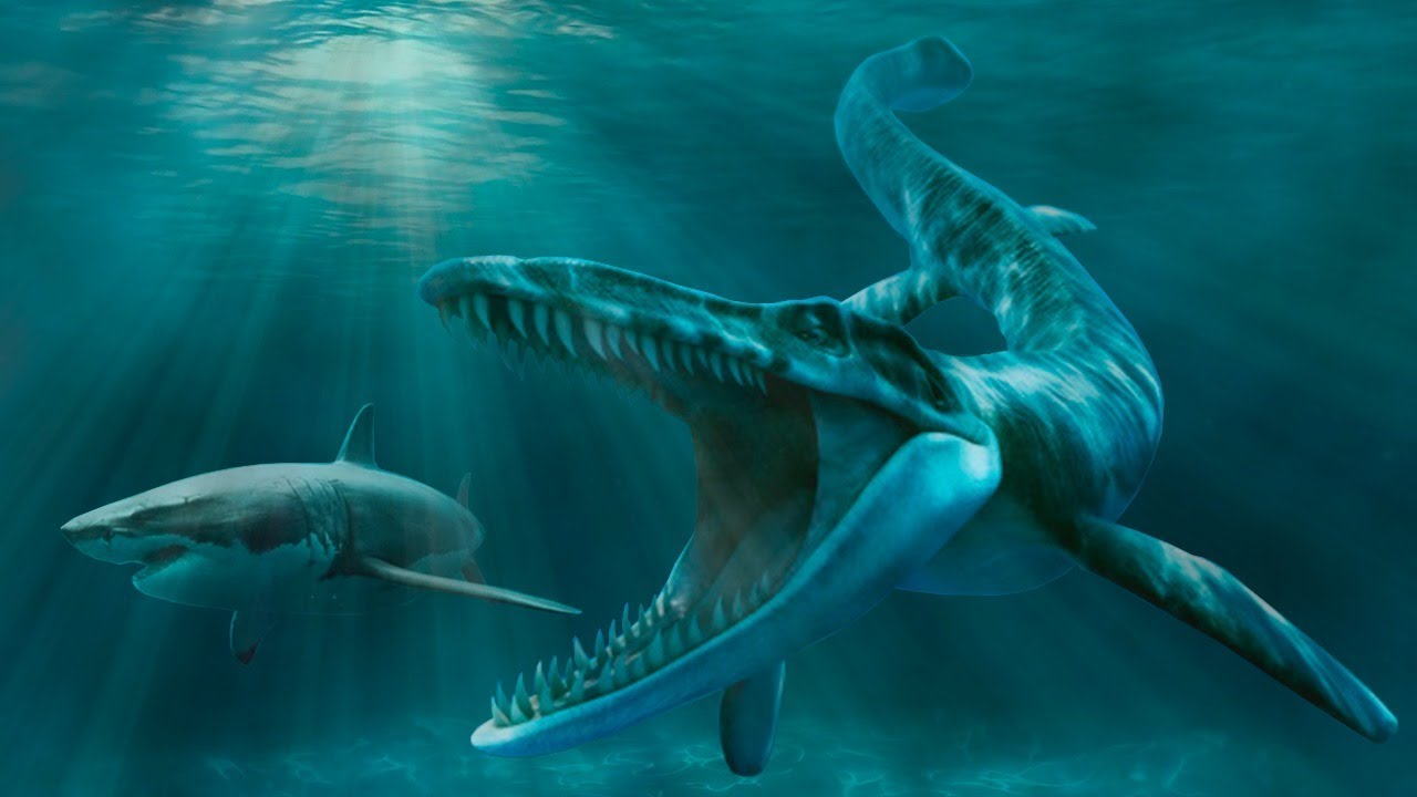hand bags: Top 10 Terrifying Prehistoric Sea Monsters |Scariest Prehistoric Sea Creatures