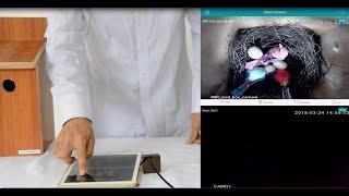 Hoe WIFI Nestkast Camera te Installeren met Mobiele APP