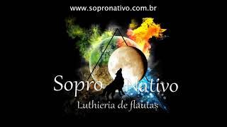 Musica Xamanica para relaxar e meditar  - sons da natureza e flauta indigena