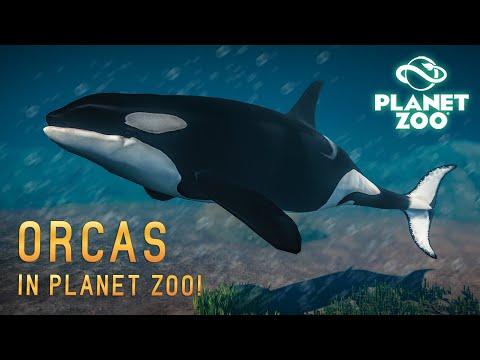 KILLERWALE, ZÜGELPINGUINE & SCHWARZFUßILTIS! 3 NEUE TIERE! - Planet Zoo Mods |