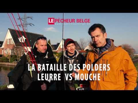Battle leurre vs mouche en polder