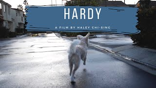 Hardy | Short Persuasion Film