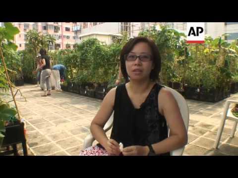 High rise urban farming in Hong Kong