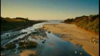 你絕對不能錯過的 Wild Ocean 海洋的美麗與哀愁 2010年11月隆重發行!!