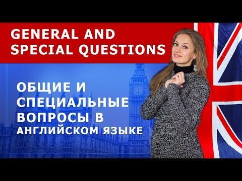 Как строится специальный вопрос в английском