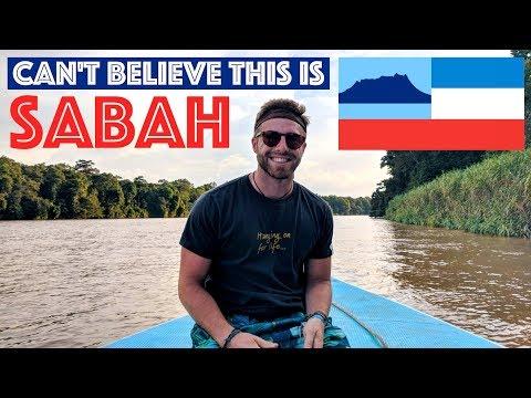 CAN'T BELIEVE SABAH: UNREAL KINABATANGAN RIVER EXPERIENCE || TRAVEL MALAYSIA