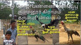 Nattu kozhi pannai dharmapuri - Gummanur | Desi chicken farm நாட்டுக்கோழி பண்ணை தர்மபுரி - கும்மனூர்