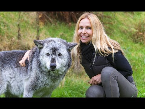 THE WOLVES' RETURN TO THE UK - George Monbiot