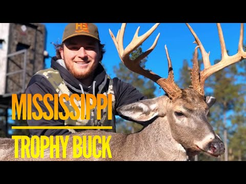 Mississippi Whitetail Trophy At Hollis Farms