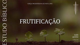 Estudo Bíblico: Frutificação | IPNL | 07.05.2020