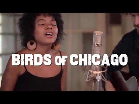 "Folk Alley Sessions: Birds of Chicago - ""Good Dream"""