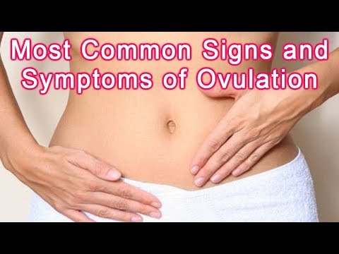 Signs of Ovulation – Most Common Signs and Symptoms of Ovulation